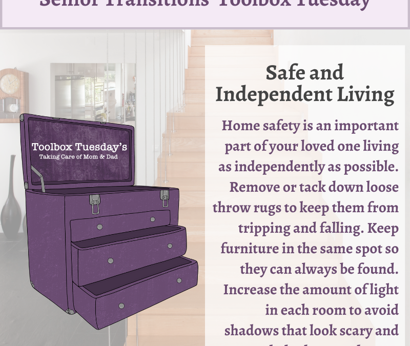 Safe and Independent Living for Aging Parents and Grandparents with Cognitive Decline or Dementia