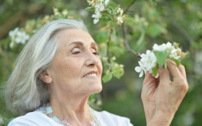 What Helps a Senior Bloom?